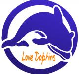 Free Photo - Love Dolphins