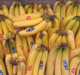 Free Photo - Fresh Banana