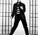 Free Photo - Elvis Presley