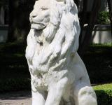 Free Photo - Lion Sculpture