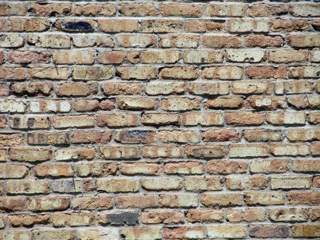 Wall made of Bricks - Free Stock Photo