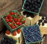 Free Photo - Fresh Berries
