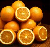 Free Photo - Juicy Oranges