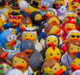 Free Photo - Toy Ducks