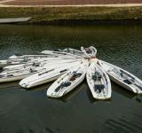 Free Photo - Group of Canoes