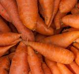 Free Photo - Bunch of Carrots