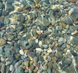 Free Photo - Pebbles in the Water