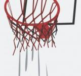 Free Photo - Basketball Vector