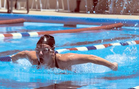 Swimmer in Competition - Free Stock Photo