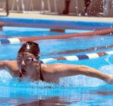 Free Photo - Swimmer in Competition