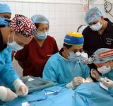 Free Photo - Performing Surgery