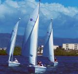Free Photo - Sail Boats