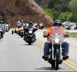 Free Photo - Motorcycle Rally