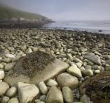 Free Photo - Stones on the Shore