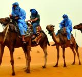 Free Photo - Camel Riders