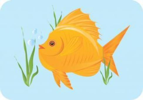 Goldfish Vector Illustration - Free Stock Photo