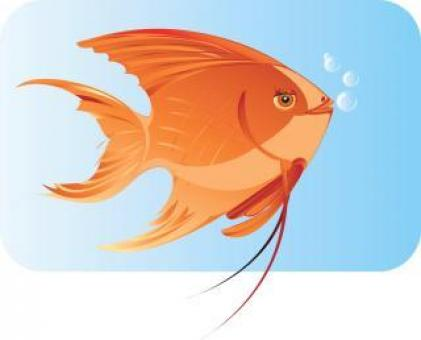 Fish Underwater - Vector Illustration - Free Stock Photo