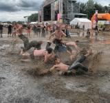 Free Photo - Into the Mud