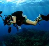 Free Photo - Underwater Photographer