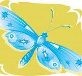 Free Photo - Blue Butterfly Illustration