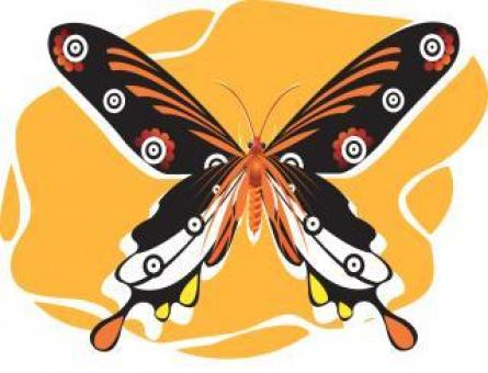 Butterfly Illustration - Free Stock Photo
