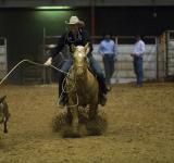 Free Photo - Rider in the Ring