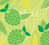 Free Photo - Grapes Vector Background