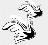 Free Photo - Piece Doves Illustration