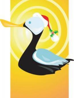 Christmas Duck Illustration - Free Stock Photo