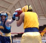 Free Photo - Boxing in the Ring