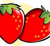 Free Photo - Strawberries	Vector Illustration