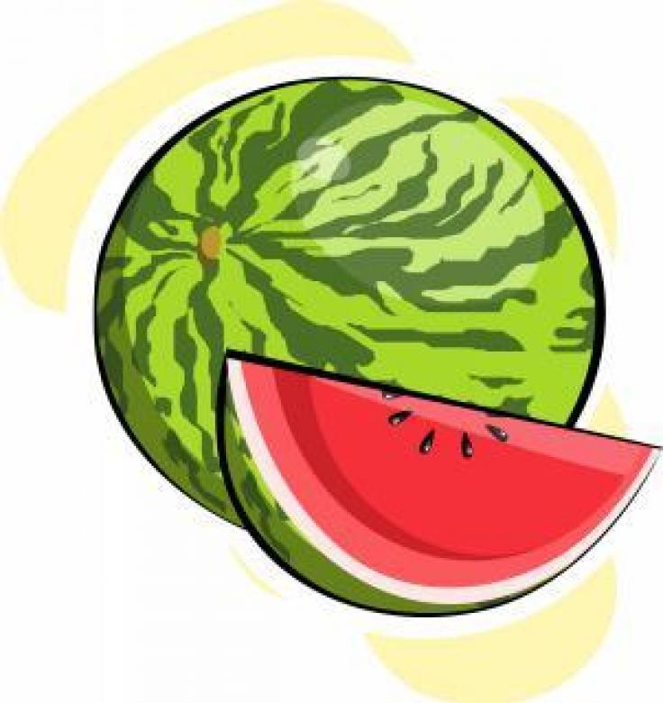 Free Stock Photo of Watermelon Vector Illustration Created by maa illustrations