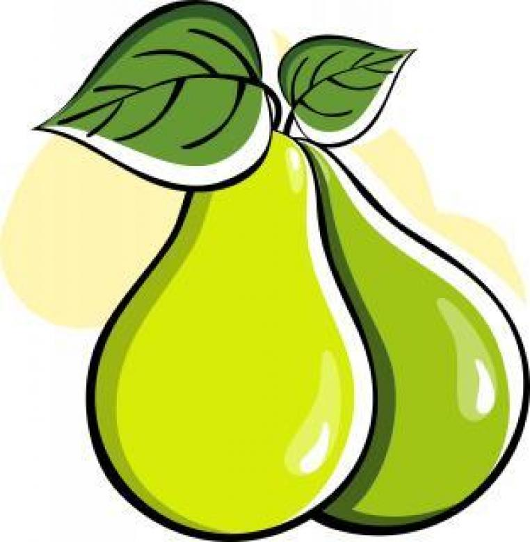 Free Stock Photo of Vector Pears Illustration Created by maa illustrations