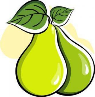 Vector Pears Illustration - Free Stock Photo