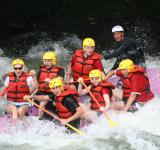 Free Photo - Rafting in the River