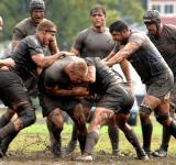 Free Photo - Rugby Match