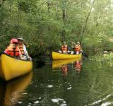 Free Photo - Family Canoeing