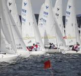 Free Photo - Sailboat Competition