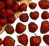 Free Photo - Fresh Strawberries