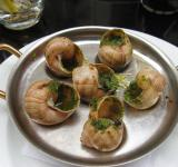 Free Photo - Snail Dish