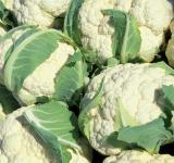 Free Photo - Fresh Cauliflowers