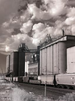 Grain Elevator - Free Stock Photo