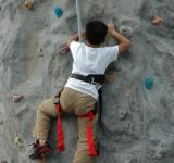Free Photo - Obstacle Climbing