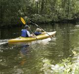 Free Photo - Kayaking in the River