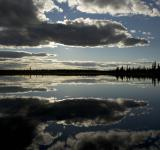 Free Photo - Reflective Lake