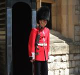 Free Photo - Welsh Guardsman