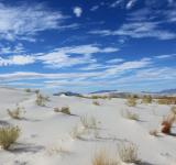 Free Photo - White Sands