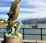 Free Photo - Dolphins Statue