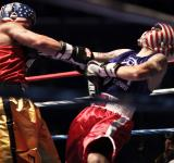 Free Photo - Boxing Bout