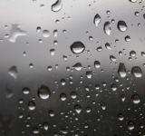 Free Photo - Water Droplets